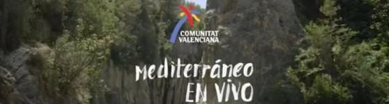 Mediterraneo en vivo